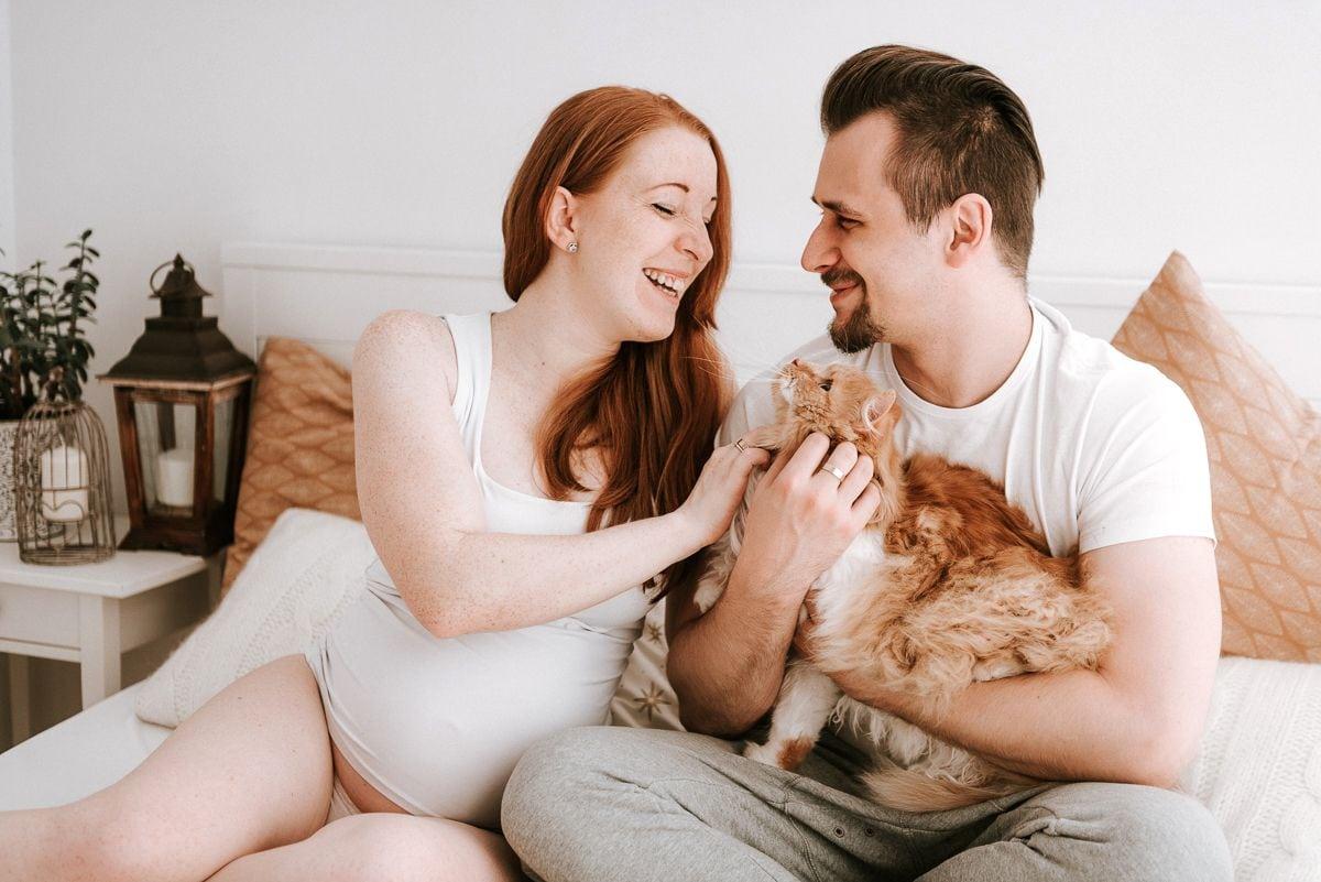 kot na sesji ciążowej